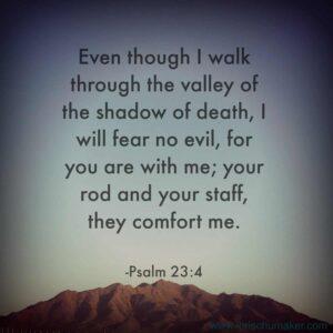 Psalm 23-4; defeat fear